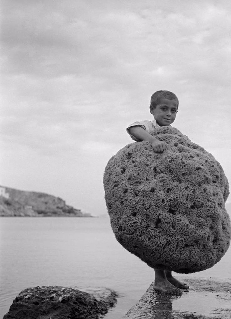 Kalymnos island, Greece 1950. Fishing the natural sea sponges. photo Dimitri Charisiadis