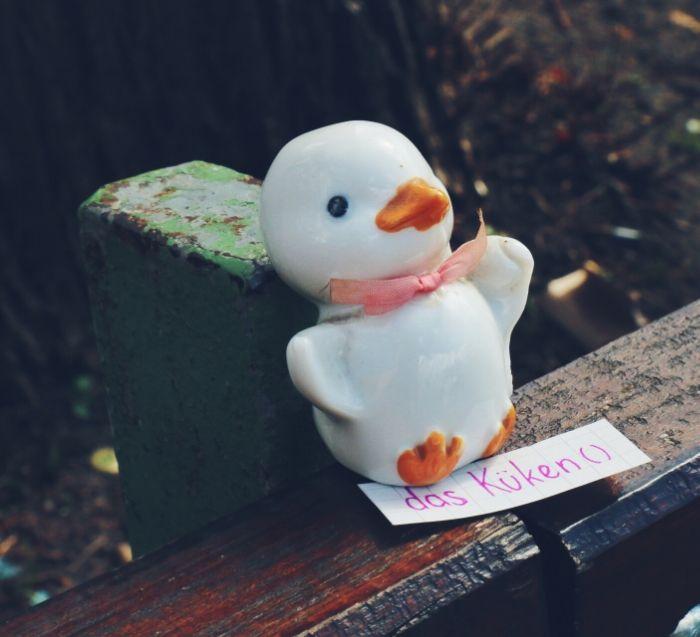 das Küken - chick