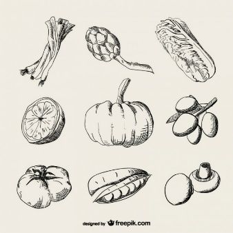 Realistische Zeichnung Gemüse