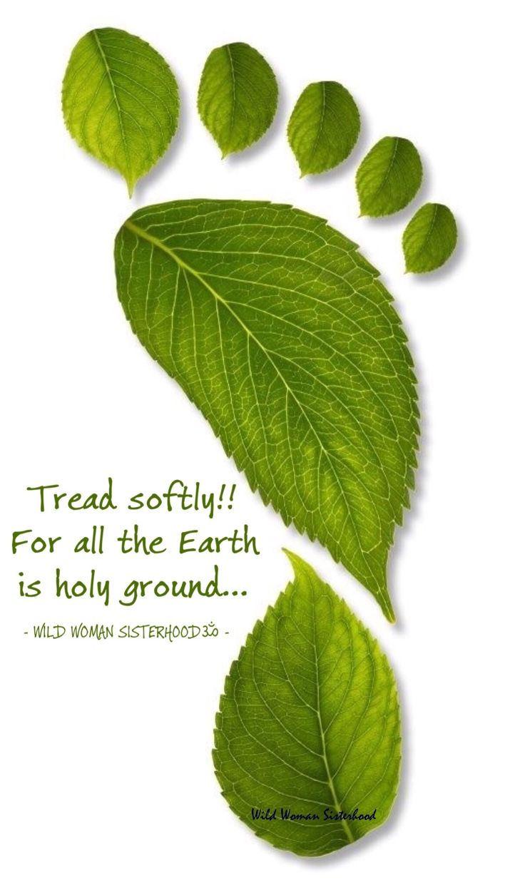 Mother Earth •~• Tread softly! For all the Earth is holy ground.