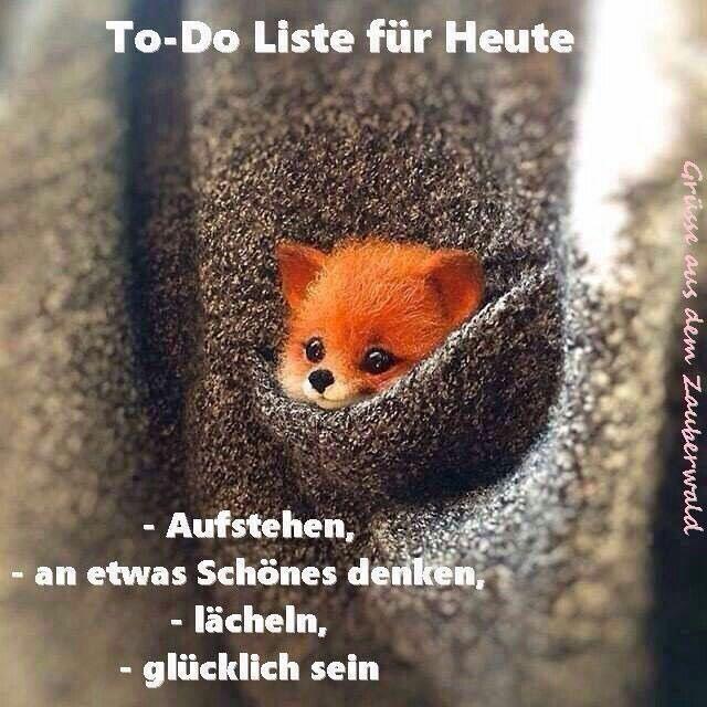 Pin Von Bet Tina Auf 26 Gedichte Spruche Zitate Susse Tiere Tiere Niedliche Tiere