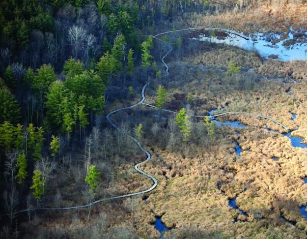 36 best wetland inspiration images on pinterest floating for Bc landscape architects