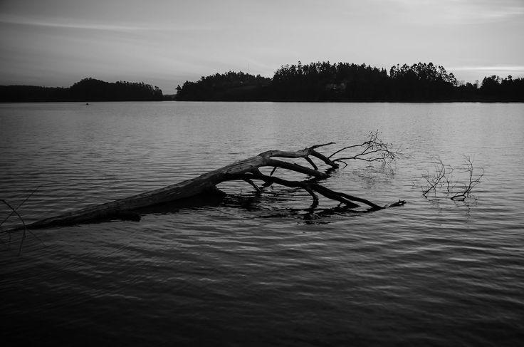 #fotografia #Byn #byw #laguna #RocanRollo #Nikon #Concepcion #SanPedro #Relax rocanrollo.tumblr.com