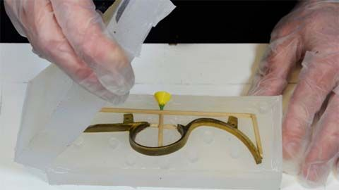 A two-part mold is made of a flintlock pistol trigger guard using SORTA-Clear®  37 Silicone for the lost-wax process.