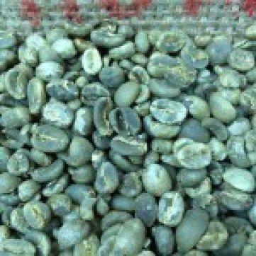 raw sumatra coffee beans