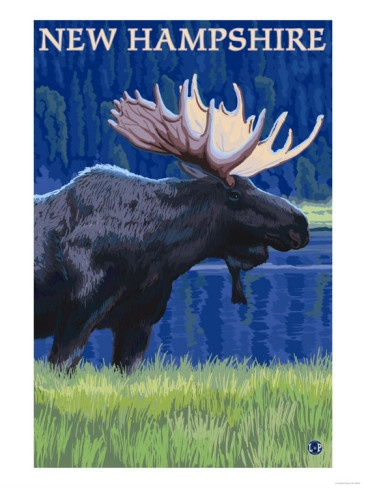 New Hampshire - Moose in the Moonlight Premium Poster