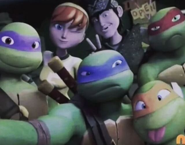 Turtle Shelfie! ^^lol Leo and Raph are so done.