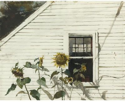 "'Andrew Wyeth SUNFLOWERS 18.50"" x 23.75"" (46.99cm x 60.33cm) Created: 1982"