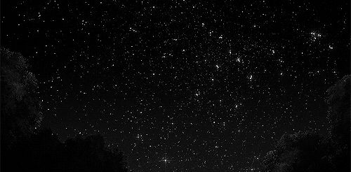 tree Black and White anime sky trees b&w night stars star Shooting Stars anime scenery Falling Stars anime monochrome sky scenery star scenery