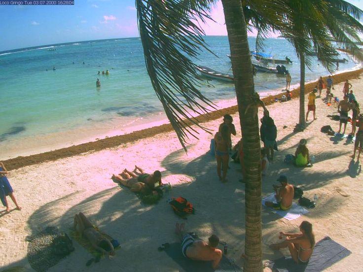 Akumal Holiday Resort Beach Weather Webcam Akumal Beach Mexico  Mexico Beach Camera