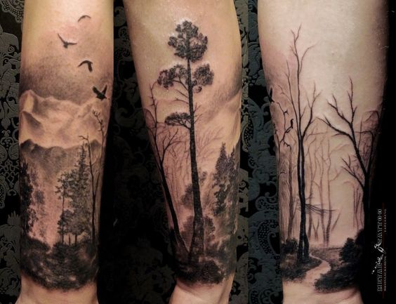 Trees and tree tattoos on Pinterest | Tree Tattoos, Pine Tree and ...