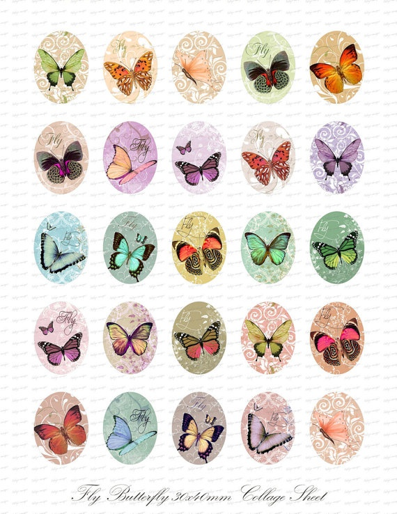 .beautiful butterflies