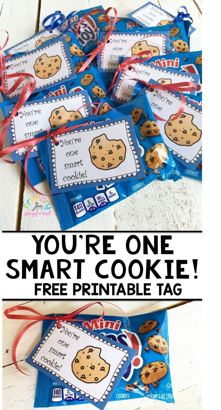 graphic regarding You're One Smart Cookie Printable named Youre A single Wise Cookie! Free of charge Printable Tag 2nd Quality