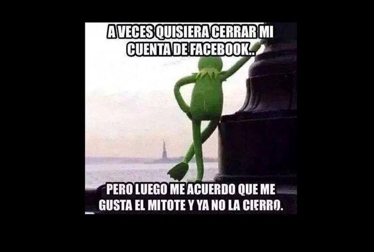 la rana rene | Rana_Rene-Memes_de_la_rana_rene-a_veces_quisiera-muppets-Kermit ...
