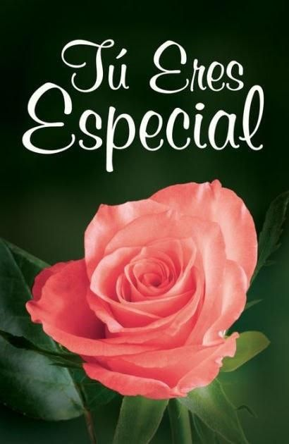 Spanish - Tract-Youre Special (Tu Eres Especial) (NVI) (Pack Of 25)