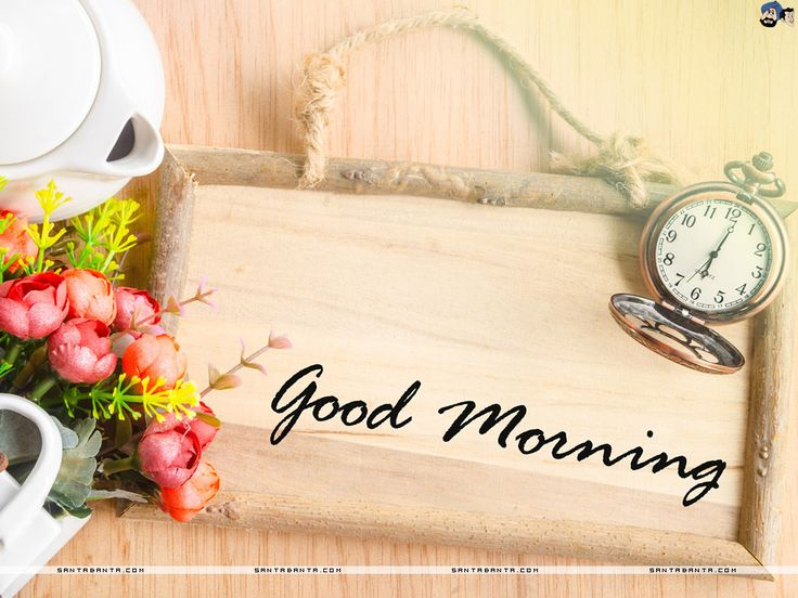 Good Morning Friends!!!!!!!!!!!