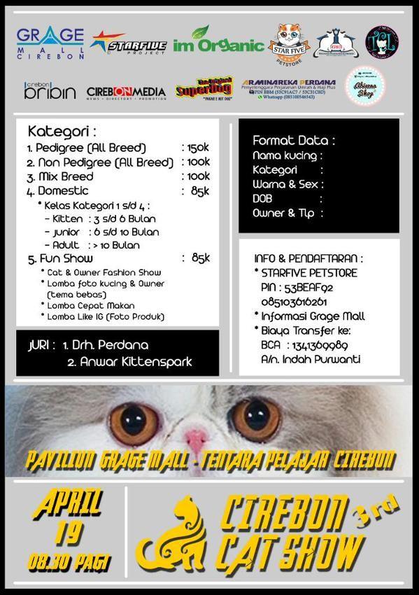 """Bagi Cat Lovers. Jangan lewatkan 3rd Cirebon Cat Show """"balik maning"""", di Grage Mall, 19 April 2015  Cirebonmedia.com"""