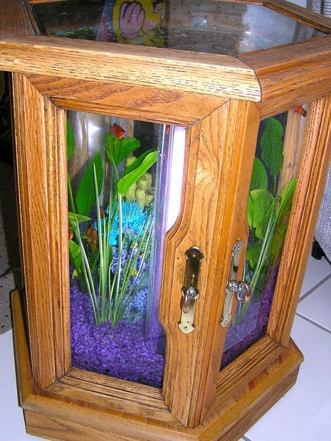 25 best ideas about hexagon fish tank on pinterest fish for Make your own fish tank