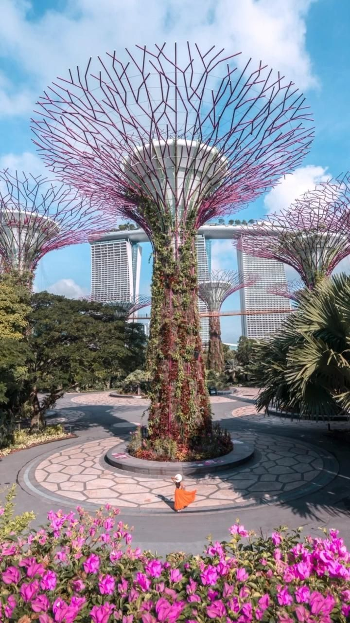 When To Visit Gardens By The Bay