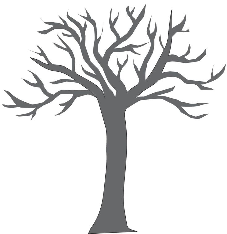 Empty Tree Coloring Sheet Big Tree Trunk Colouring Pages