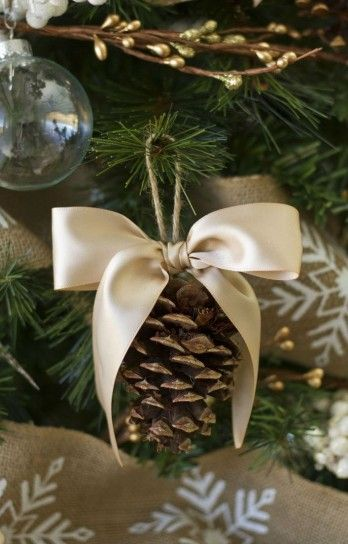DIY ornament I would spray paint pinecone gold or silver