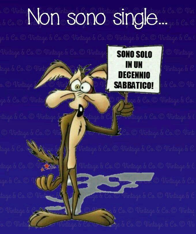 Cartoni animati willy coyote boccaccio rugby news notizie
