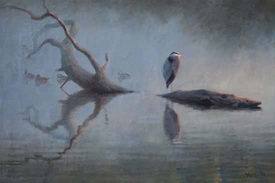 42 Best Egrets And Herons Images On Pinterest Grey Heron