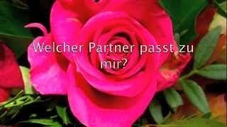 https://www.youtube.com/user/partnerhoroskope/videos