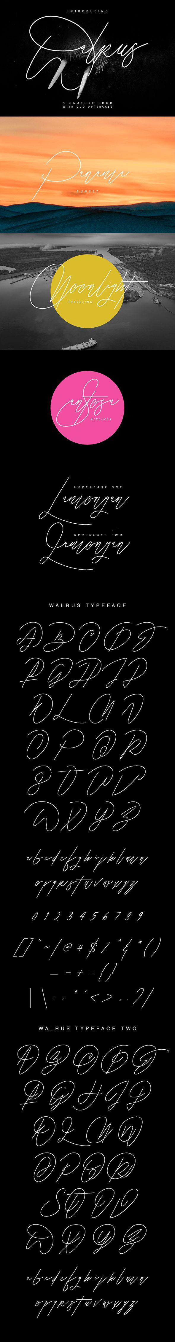 Walrus Signature Font — TrueType TTF #elegant #maulanacreative • Download ➝ https://graphicriver.net/item/walrus-signature-font/19613420?ref=pxcr