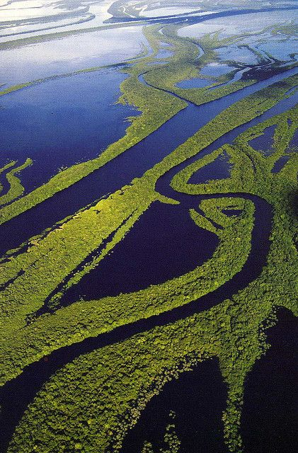 The Archipelago of the Anavilhanas in the Amazon Rainforest, Brazil (by nboliveira).