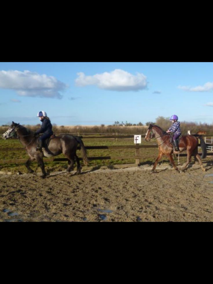 @aoifa04 on Merlin and me on ziggy