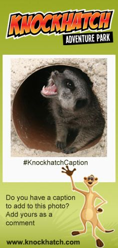 #KnockhatchCaption : Do you have a caption to add to this photo? Please add it to the comment...