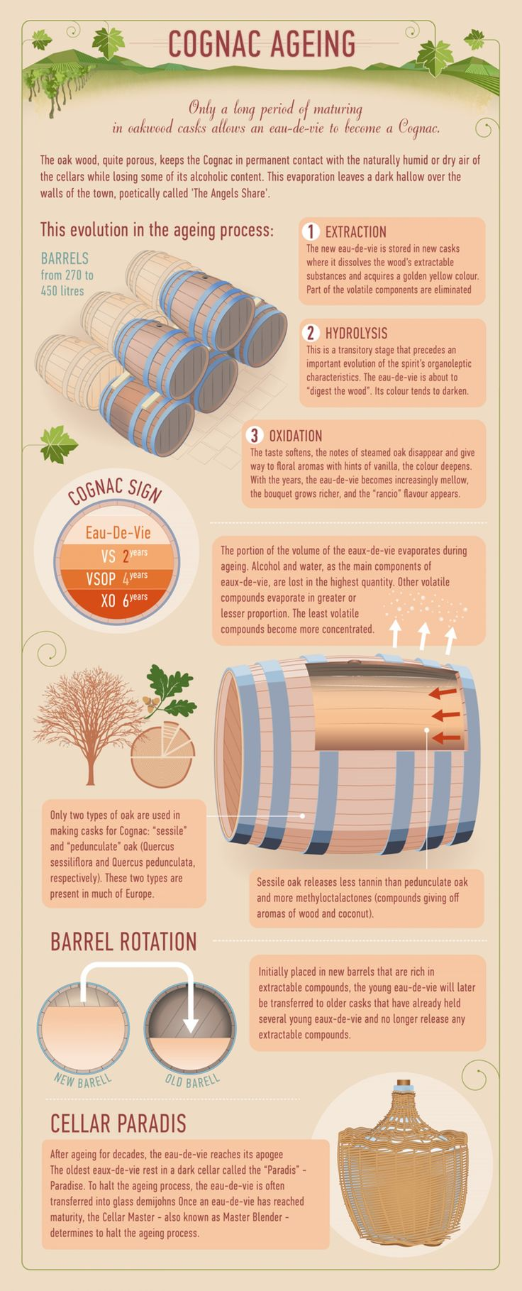 #Cognac Ageing #infographic #infografía  Re-pinned by www.avacationrental4me.com
