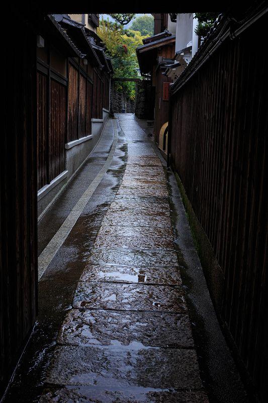 京都の紅葉2015・圓徳院の石蕗と染まり始めのお庭 : 花景色-K.W.C. PhotoBlog