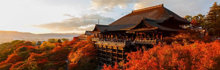 Japan Tours, Vacation Packages | Zicasso