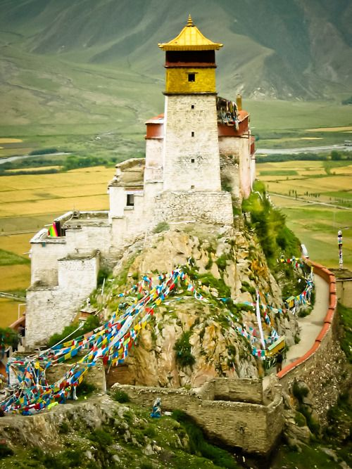 Tibet is located in the highest region of the world, which is why it is often referred to as the 'Roof of the World'