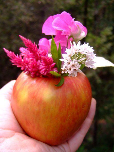 Garden of Eden apple theme?
