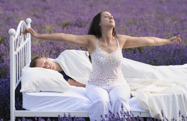 Descubre las mejores PLANTAS MEDICINALES para dormir