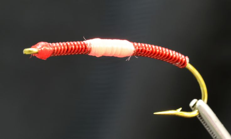 65 best images about fly worm dazdovka on pinterest carp for Best worms for fishing