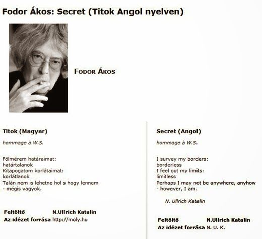 Fodor Ákos: Fodor Ákos: TITOK/SECRET