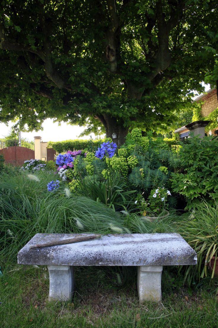 Jardin Champ Tre Avec Piscine Monteux R Alis Par Les