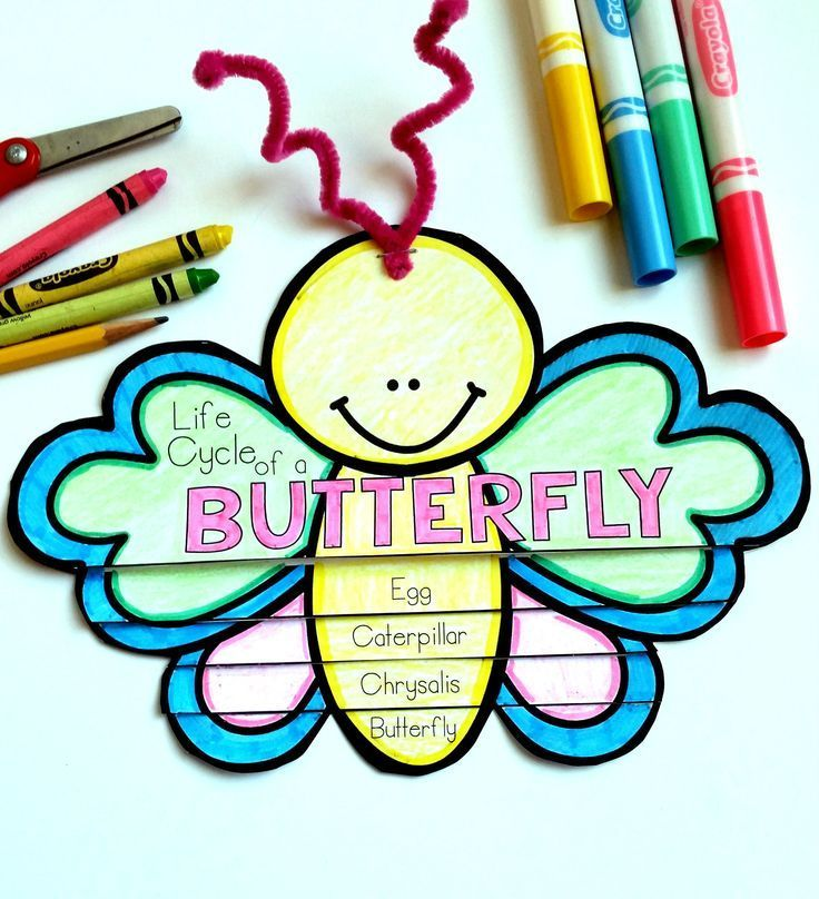 Butterfly Life Cycle: A perfect interactive craft to make learning about the life cycle of a butterfly fun and engaging.