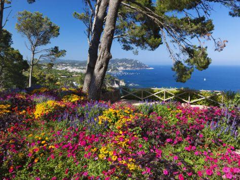 M s de 25 ideas incre bles sobre jardines costeros en for Jardines cap roig