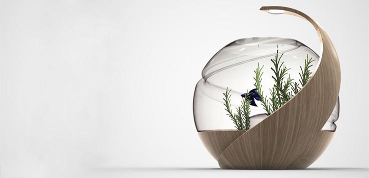 17 best images about aquarium on pinterest aquarium for Avo fish tank