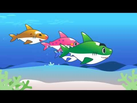 preschool shark song 39 best images about weather theme on 651