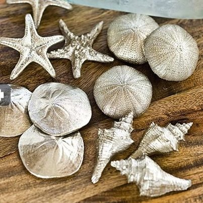 Spray paint sea shells silver