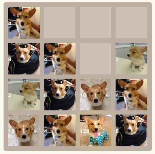Corgis | 25 Fantastic Themed Versions Of The 2048 Game To Fuel Your Addiction