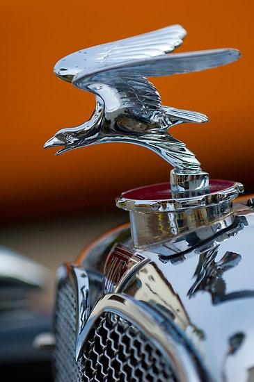 1932 Alvis Speed 20 Hood Ornament