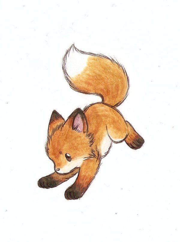 little fox drawing - Google Search