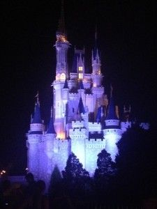 How can you choose the best #Disneyworld package when you are booking your vacation?  Check out our tips today at http://mousehints.com/how-to-choose-the-best-disney-world-package!  Enjoy!
